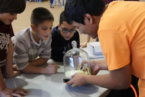Children view a science experiment at the Fiesta of Physics